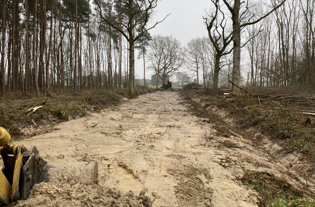 East / West Ride Reinstatement: Opening up habitats for butterfly conservation