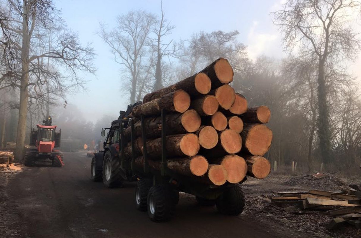 Stunning local Larch timber being brought back to the yard for milling
